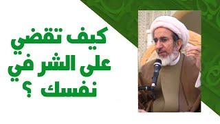 كيف تقضي على الشر في نفسك - الشيخ حبيب الكاظمي