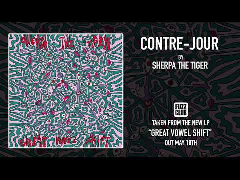 Sherpa The Tiger - Contre-jour
