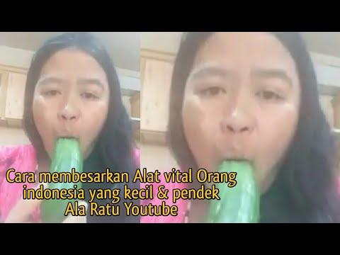 Viral - Ratu youtube ajari membesarkan anu orang indonesia yang pendek & kecil