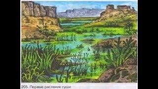 Происхождение растений. Биология 6 класс