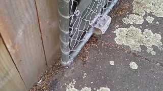 Gate Jockey Wheel
