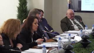 видео Принципы конкурентного права ЕС. Антимонопольное регулирование в ЕС