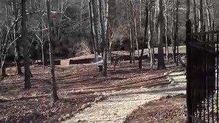 Tiny Homes For Sale Or You Can Live In The Community  Cloundl Ga