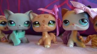 LPS коллекция стоячих кошек