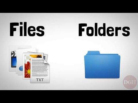 Computer Skills Course: File Management, Part 1