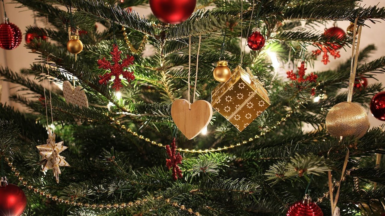Wo Kommt Der Weihnachtsbaum Her.Darum Schmücken Wir Zu Weihnachten Einen Tannenbaum