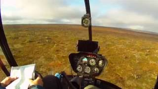 Reindeer herding with Robinson R22 helicopter