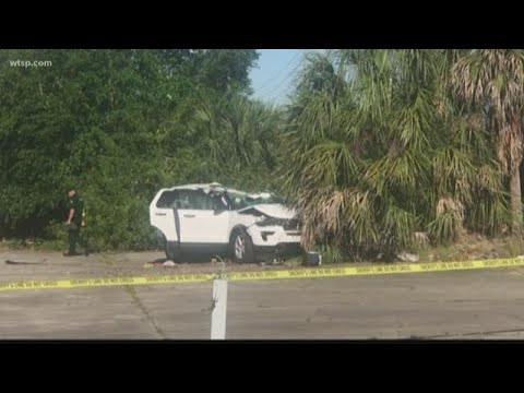 Pasco County crash leaves elderly man dead after carjacking