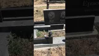 Похороны собаки