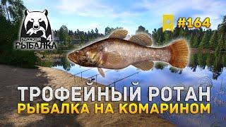 Трофейный Ротан. Рыбалка на Комарином - Русская Рыбалка 4 #164