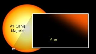 Top 10 Largest Stars in Our galaxy and The Universe