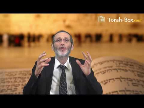 Se réjouir dans toutes les situations (Rav Yossef-'Haï ABERGEL)