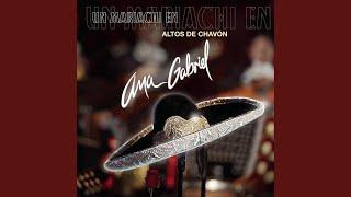 Medley Ranchero: Mi Talismán/No Entiendo/Hechizo (Altos De Chavón Live Version)