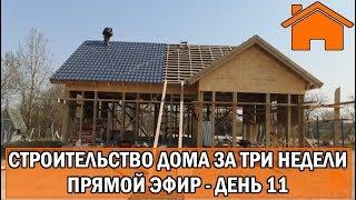 Строительство дома за 3 недели, прямой эфир. День 11.