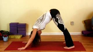 Yoga to Open Hips | Back & Hip Pain Relief, How To Beginners Stretch Routine, Total Wellness Austin Video