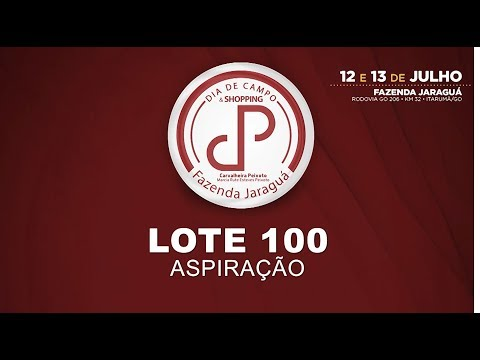 LOTE 100
