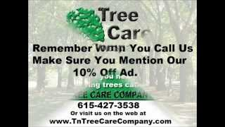 tree removal and tree service in watertown tn
