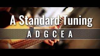 A Standard Guitar Tuner (ADGCEA)