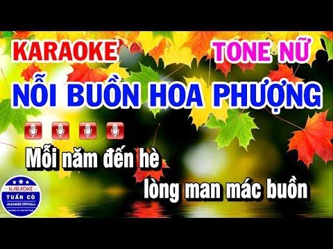 Karaoke Nỗi Buồn Hoa Phượng | Nhạc Sống Beat Nữ | Karaoke Tuấn Cò
