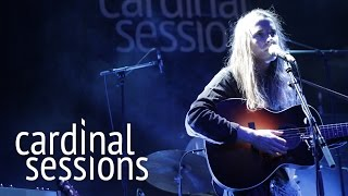 Andy Shauf - Wendell Walker - Live at CARDINAL SESSIONS Festival