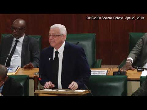 Rev Ronald Thwaites, Shadow Minister of Education - April 23, 2019 | 2019-2020 Sectoral Debate