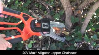 Some Black + Decker 20 Volt Max* lithium tools for yardwork