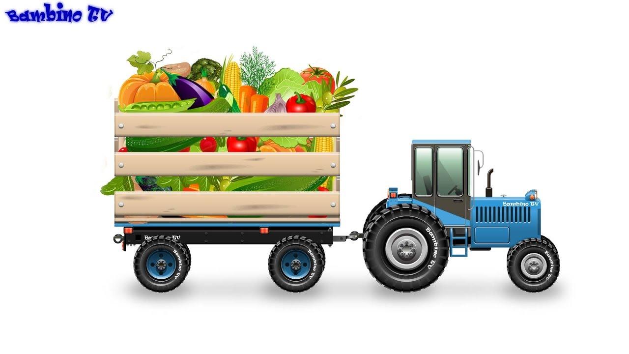 теста картинки машина с овощами нас самые быстрые