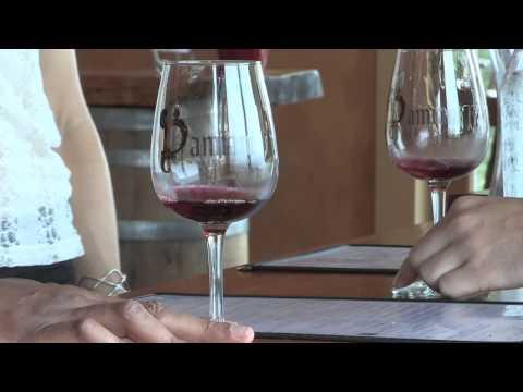 Damiani Wine Cellars | Sip & Swirl | WSKG
