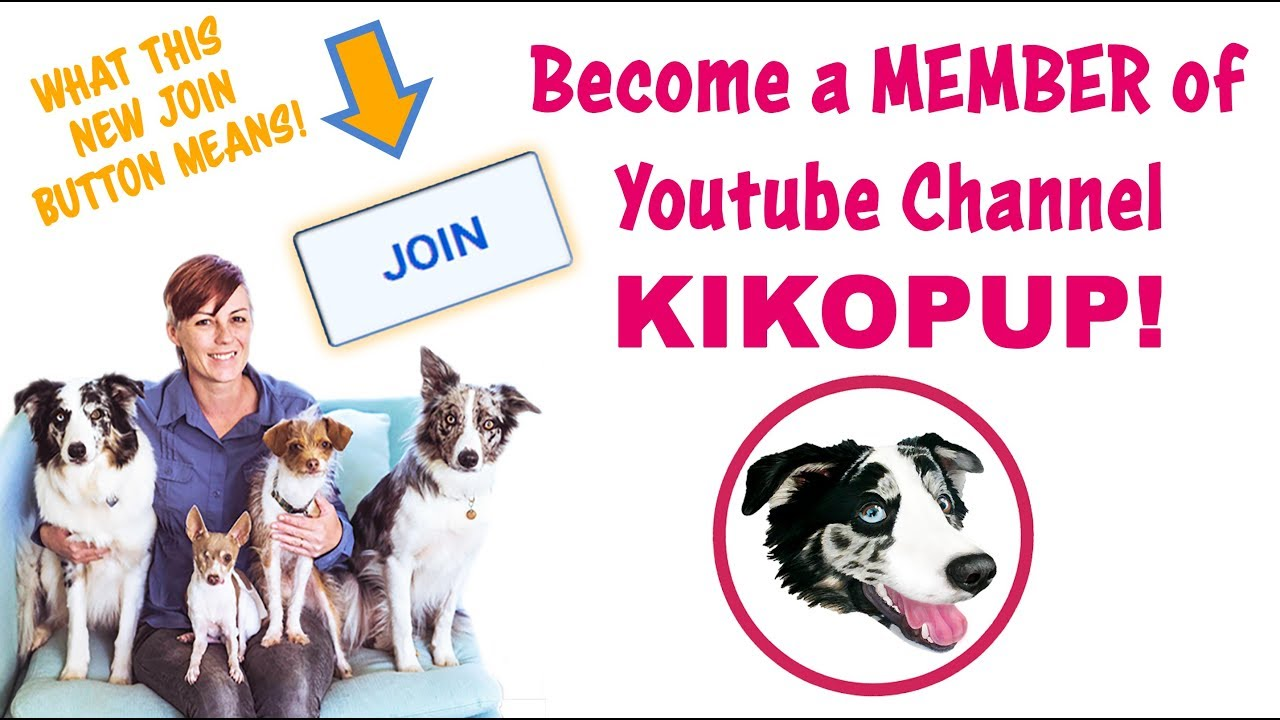 NEW JOIN BUTTON to become a MEMBER of Channel KIKOPUP! - YouTube
