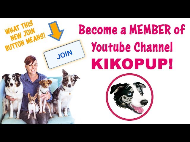 NEW JOIN BUTTON to become a  MEMBER of Channel KIKOPUP!