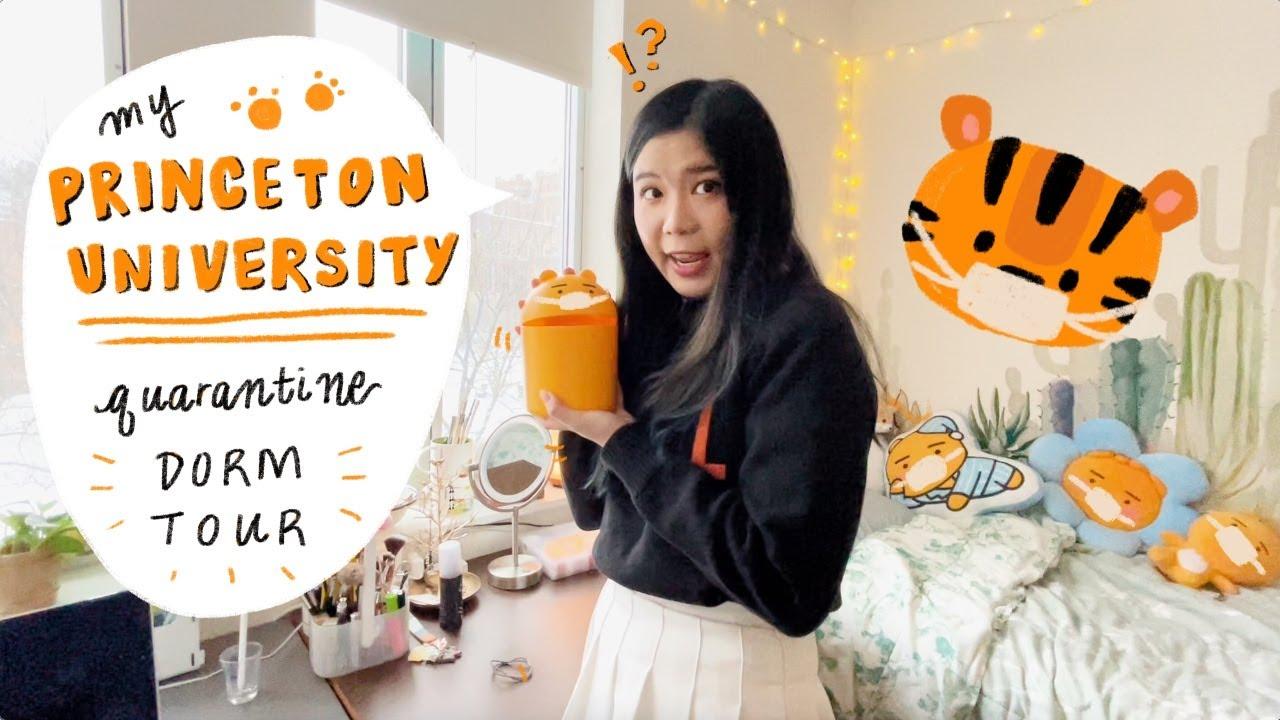 Download Princeton University Dorm Room Tour