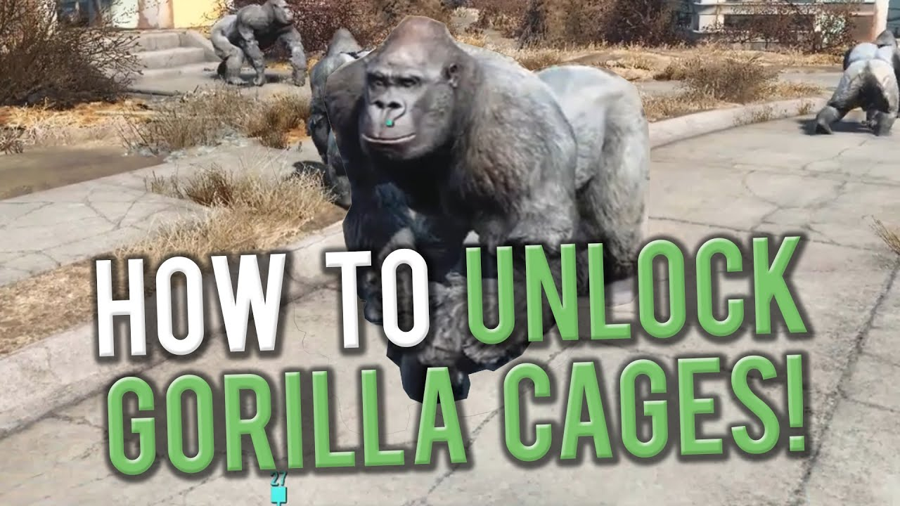 how to get gorilla in fallout 4