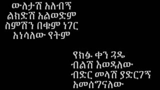 Neway Debebe - Wuletash Alebign ውለታሽ አለብኝ (Amharic With Lyrics)