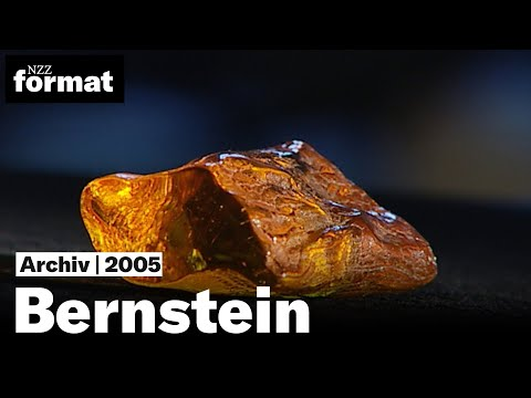 Bernstein: Die Geheimnisse des brennenden Steins - Dokumentation von NZZ Format (2005)