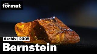Bernstein: Die Geheimnisse des brennenden Steins - Dokumentation von NZZ Format 2005