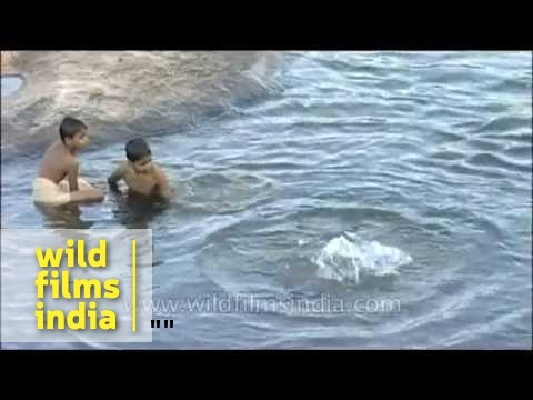 Young boys swimming in a river in Kerala