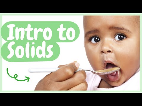 INTRODUCING SOLID FOODS: A Complete Guide to Feeding Techniques, Nutrition, Allergens & More