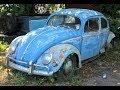 Abandoned 1957 Volkswagen Beetle/Bug