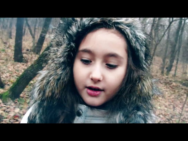 Karina Vasile - Lupii (cover by Adda)