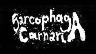 Sarcophaga Carnaria - Untitled