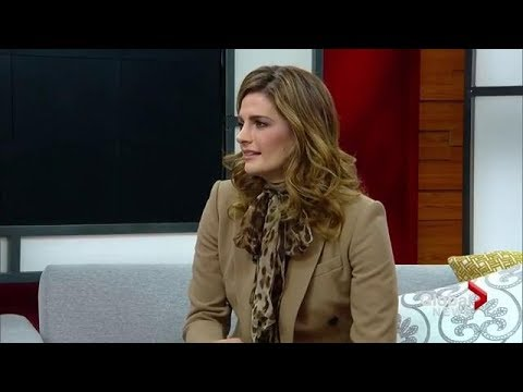 Stana Katic on her new crime thriller  'Absentia'