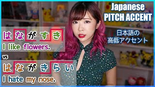 Japanese Pitch Accent┃Sound Like a Native and Avoid Embarrassment!