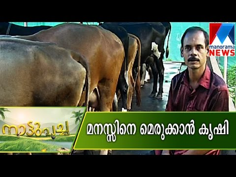 Agriculture as mental medicine | Manorama News