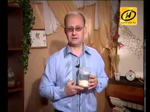 Индийский лук - целитель от 100 болезней