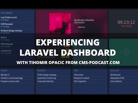 Experiencing Laravel Dashboard