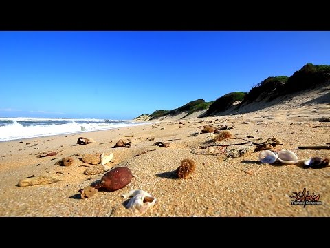Spinning Reel Beach Cottages - Accommodation Port Alfred - Africa Travel Channel