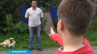 Подполковник полиции, отпугивая собаку, выстрелил мальчику в ногу