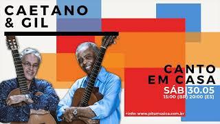 Canto em Casa 12 | Caetano e Gil (30/05/2020(