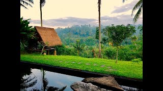 Gambar cover Day 19: Most Beautiful Airbnb in Ubud, Indonesia