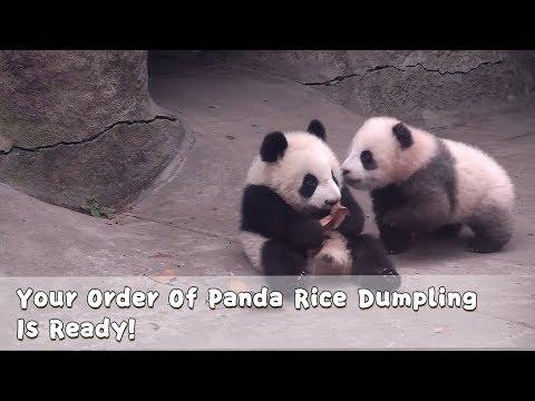 Your Order Of Panda Rice Dumpling Is Ready!   iPanda